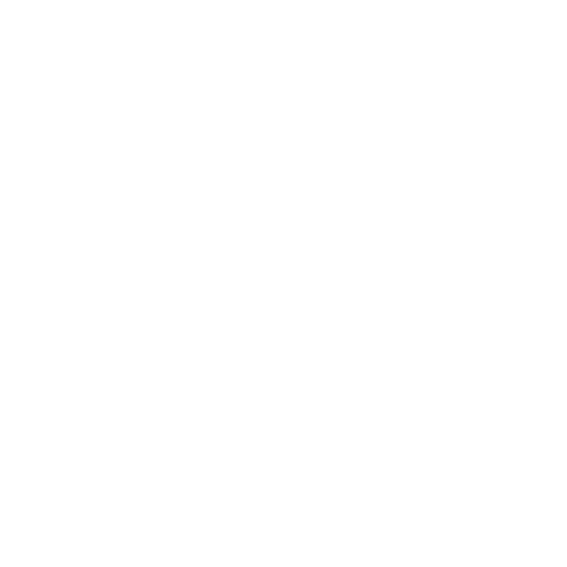Bolt shield icon | Game-icons.net