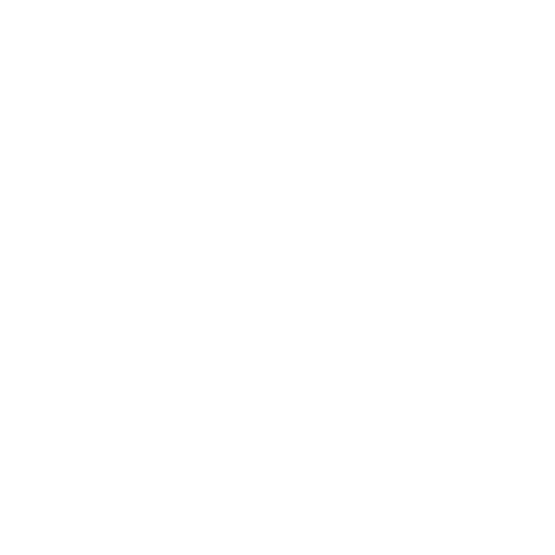 Lion icon | Game-icons.net